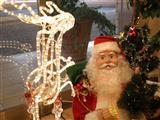 小さなクリスマス11