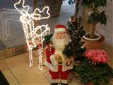 小さなクリスマス12